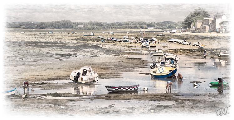 Île-Tudy #0880