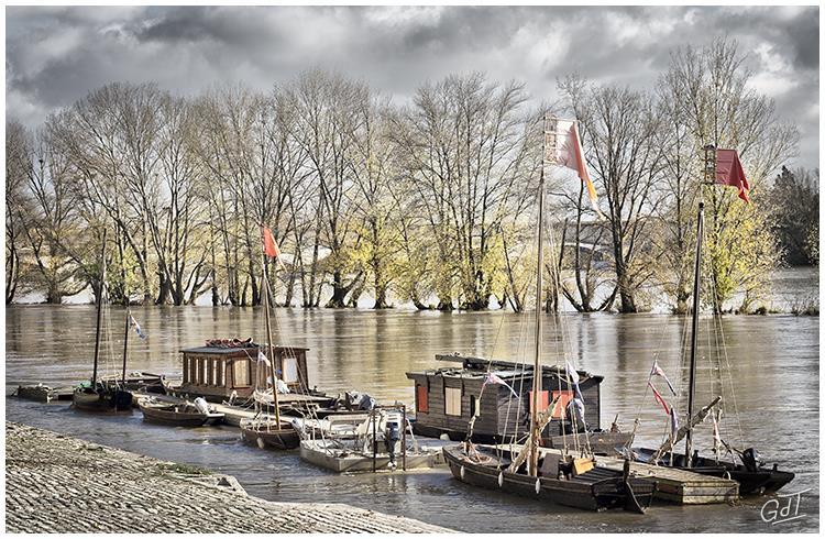 Orléans - Bords de Loire #4116