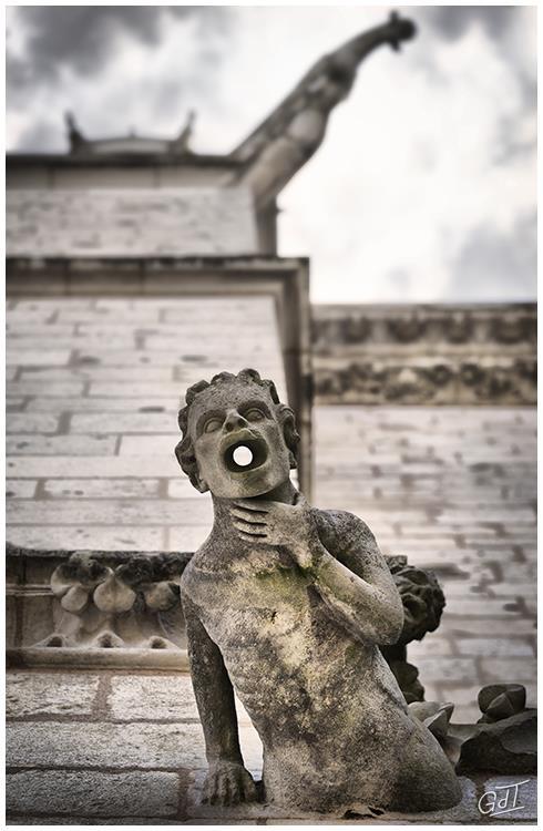 Cathédrale Saint-Pierre - Poitiers #7510