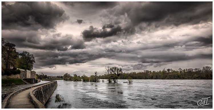 St Jean de Braye - Bords de Loire #10125