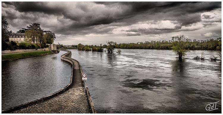 St Jean de Braye - Bords de Loire #10178